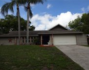 419 Winding Willow Drive, Palm Harbor image
