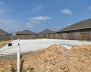 19028 Pinewood Grove Trail, New Caney image
