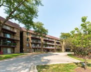 5400 Astor Lane Unit #213, Rolling Meadows image