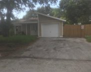 10211 Turtle Hill Court, Tampa image