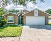 5630 Tughill Drive, Tampa image