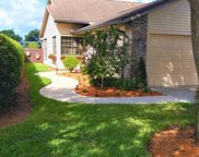 6586 Ilex Cir, Naples image
