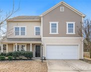 13004 William Harvey  Court, Charlotte image