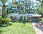 202 S Hesperides Street, Tampa image