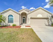24409 Breezy Oak Court, Lutz image