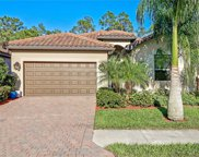 11023 Cherry Laurel  Drive, Fort Myers image