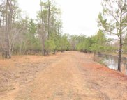 Lots 1-4 Pitch Landing Rd., Conway image