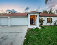 11313 Andy Drive, Riverview image