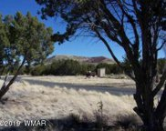 Lot 25 ACR 5091 (Tee Lane), Concho Valley image