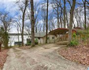 338 Lakeview Drive, Rogersville image