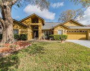 5411 Windbrush Drive, Tampa image