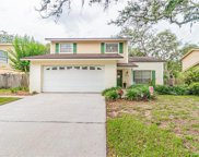 14726 Tall Tree Drive, Lutz image
