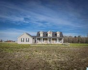 25678 Mooresville Road, Elkmont image