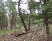 109 Comanche Creek Circle, Lake George image