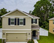 1004 Ashentree Drive, Plant City image