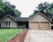 10506 Crown Point Drive, Houston image