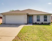 511 Blueberry Hill Lane, Mansfield image