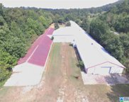 Cove Acres Rd Unit 12.89 Acres, Odenville image