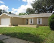 10325 Leaning Oak Dr, Port Richey image
