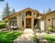 12 Dutch Mill Ct, Danville image