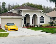 18125 Palm Breeze Drive, Tampa image