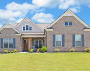 3939 Crimson Ridge Way, Buford image