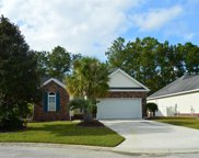 670 Pamlico Ct., Myrtle Beach image