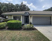 3060 Crown Heron Point, Venice image