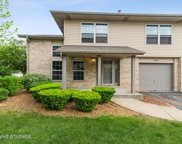 9386 Meadowview Drive, Orland Hills image