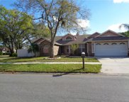 6502 Yellowhammer Avenue, Tampa image