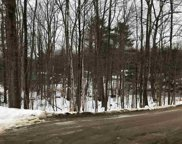 Bigelow & Big Buck Road Unit #Lot 23 & 24, Northwood image