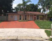 6821 Dover Court, Tampa image