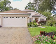 382 Hickory Springs Place, Debary image
