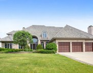 10642 Misty Hill Road, Orland Park image
