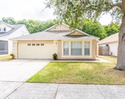 6228 Crickethollow Drive, Riverview image