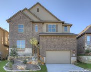 28811 Chaffin Light, San Antonio image