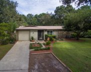 2100 Meadowbrook Drive, Lutz image