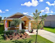 1249 Water Willow Drive, Groveland image