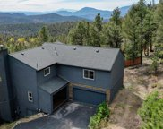 31417 Kings Valley, Conifer image