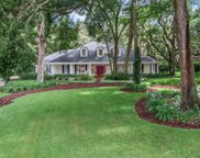 9829 Mohrs Cove Lane, Windermere image