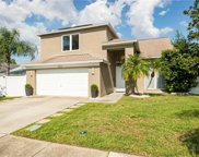 11522 Glenmont Drive, Tampa image
