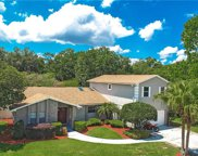 224 Peppertree Drive, Orlando image