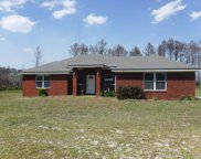 1584 COUNTY ROAD 119, Bryceville image