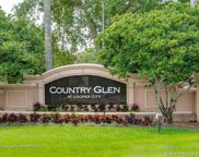 12660 Countryside, Cooper City image