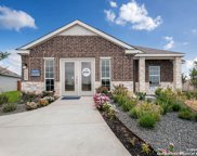 2446 Moselle Ln, New Braunfels image