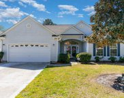 399 Blackberry Ln., Myrtle Beach image