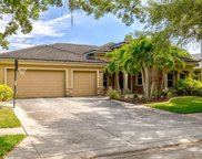 2264 Elcid Court, Palm Harbor image