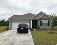 609 Pebble Rock Ct., Little River image
