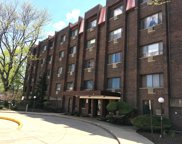 8455 West Leland Avenue Unit 102, Chicago image