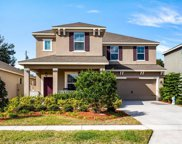 7945 Pleasant Pine Circle, Winter Park image